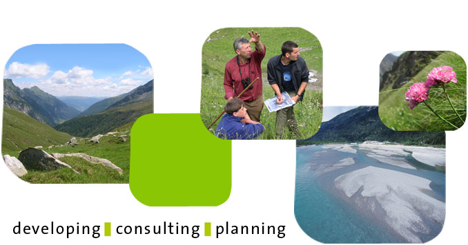 developing | consulting | planning